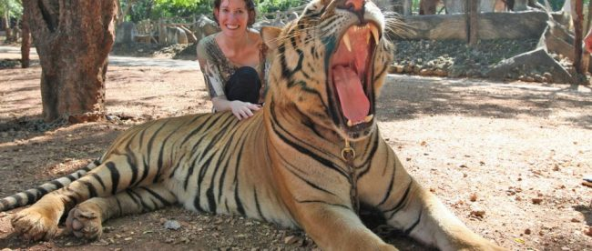 Photo of Ann with Tiger